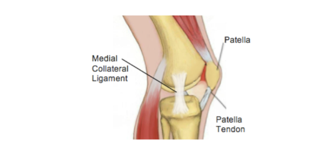 Four Tips For Reducing Knee Pain